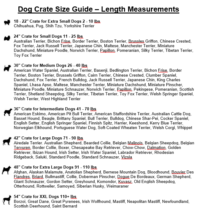 dog bed size chart