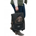 Pet Gear I-Go Sport Pet Carrier has top handle for carrying