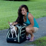 Pet Gear Traveler I-GO2 pet carrier in Sage as a tote