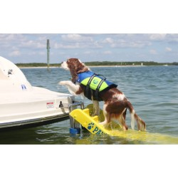 Dog using the Doggy Boat Ladder and Life Vest for fun in the water